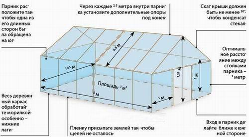 termoregulyacii-teplicy.jpg